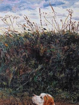 Threatened Common Land - The Wormwood Scrubs